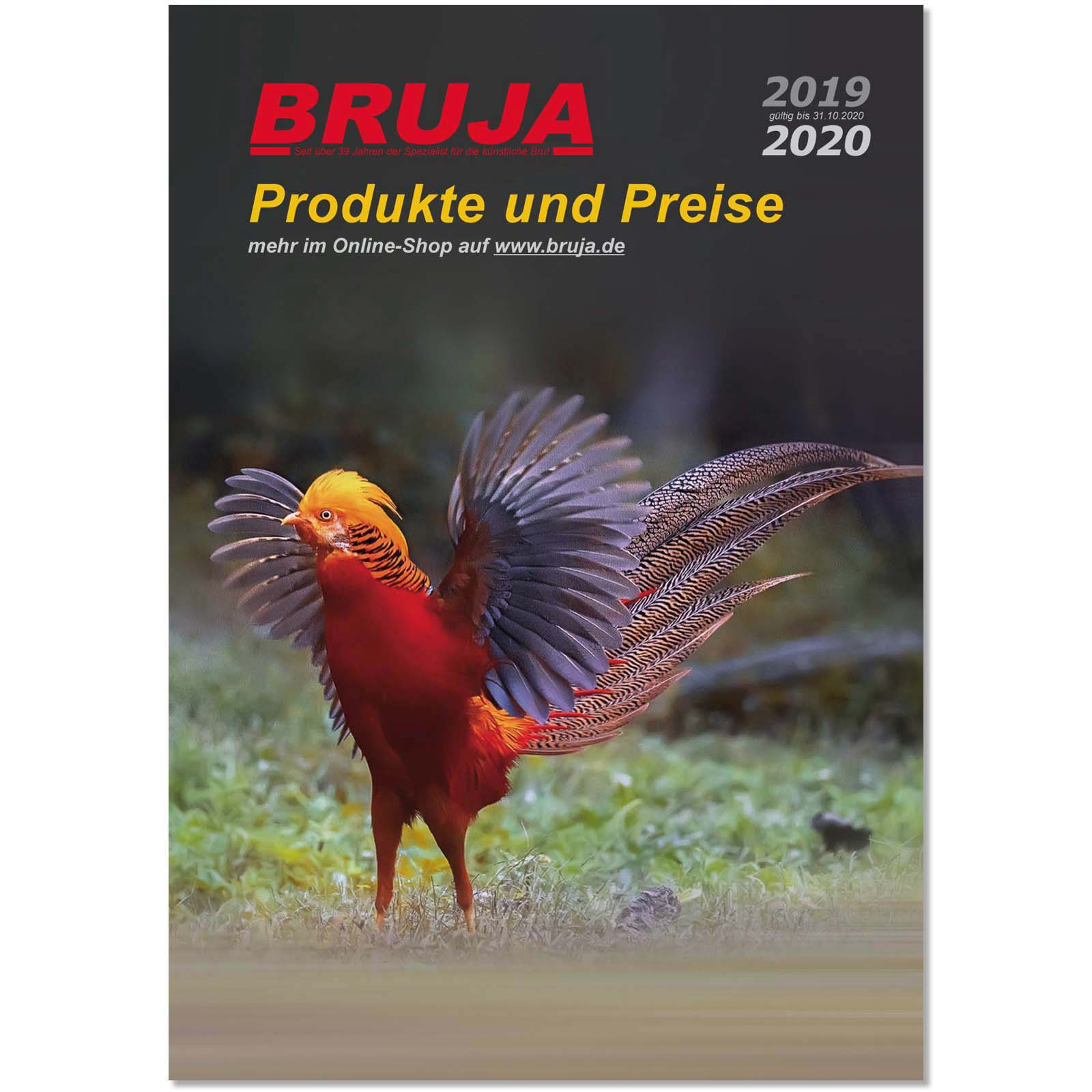 BRUJA-Katalog-2019-2020