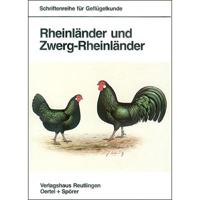 953 Rheinländer u. Zwerg-Rheinländer