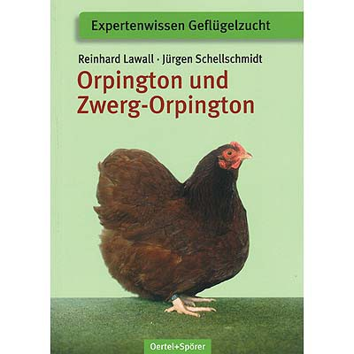 959 Orpington und Zwerg-Orpington