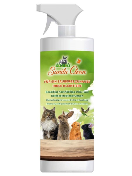 Sanilu Clean 500 ml