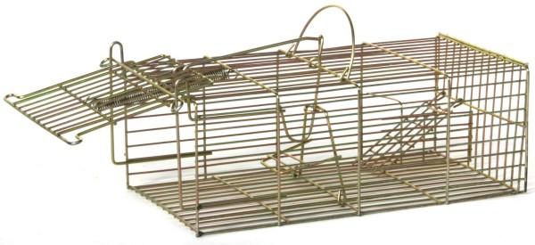 Massenfänger für Mäuse und Ratten
