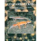 9306 Leopardgeckos