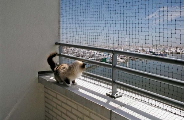 Katzenschutznetz 3 x 4 m