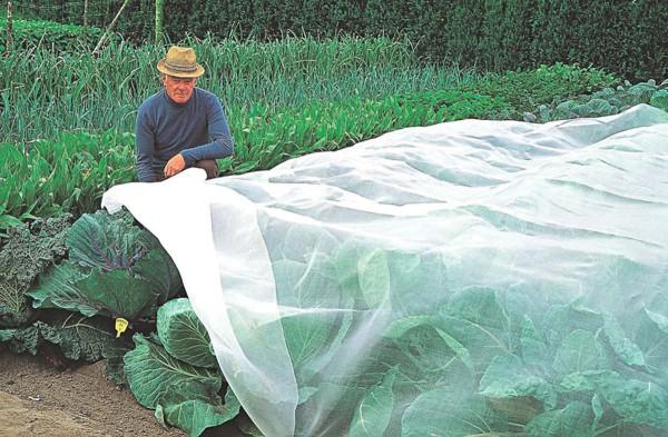 Insektenschutznetz 2 x 5 m